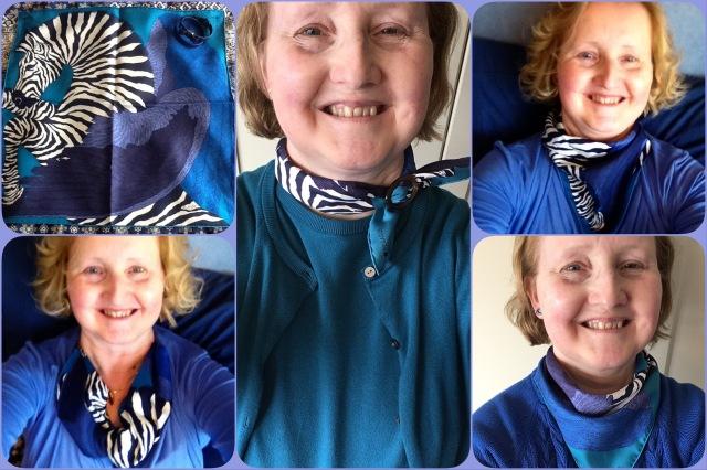 Zebra Pegasus gavroche - Hermès - collage #03