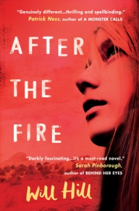 After the Fire by Will Hill