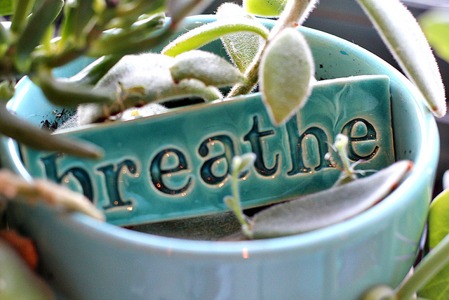 breathe | friday morning by Mae Chevrette on Flickr